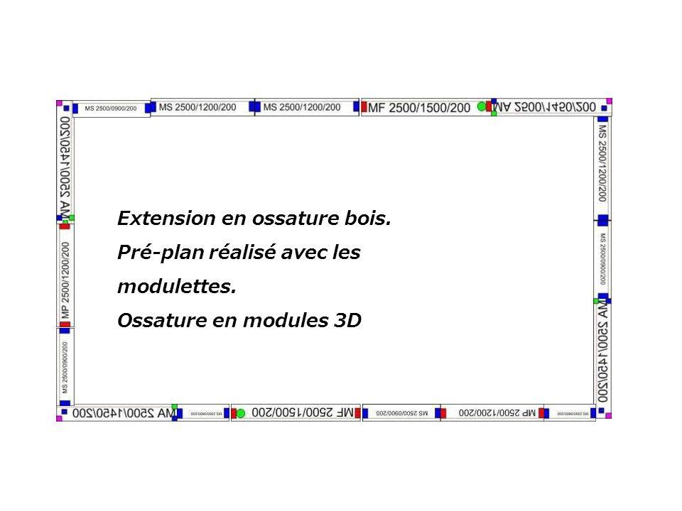 Extension en ossature bois.