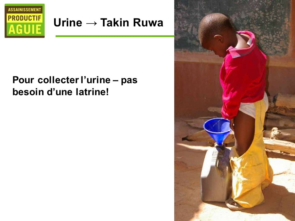 Urine → Takin Ruwa Pour collecter l'urine – pas besoin d'une latrine!