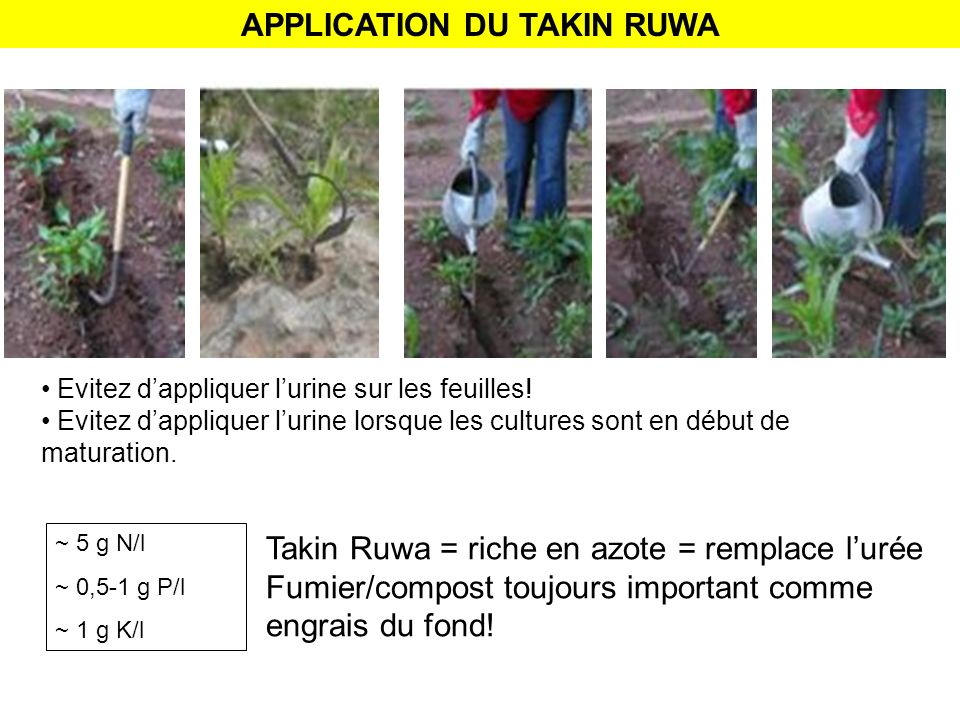 APPLICATION DU TAKIN RUWA
