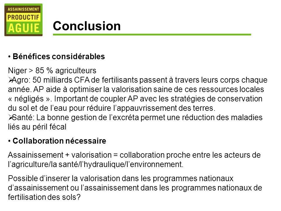 Conclusion Bénéfices considérables Niger > 85 % agriculteurs
