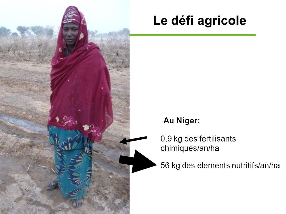 Le défi agricole Au Niger: 0,9 kg des fertilisants chimiques/an/ha