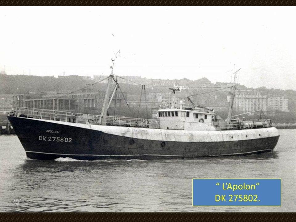 L'Apolon DK 275802.