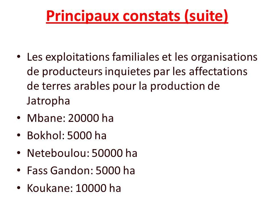 Principaux constats (suite)