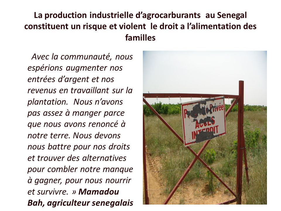 La production industrielle d'agrocarburants au Senegal constituent un risque et violent le droit a l'alimentation des familles