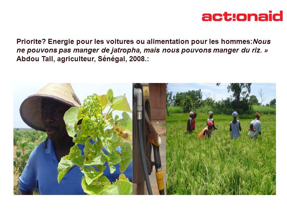 Priorite Energie pour les voitures ou alimentation pour les hommes:Nous ne pouvons pas manger de jatropha, mais nous pouvons manger du riz. »