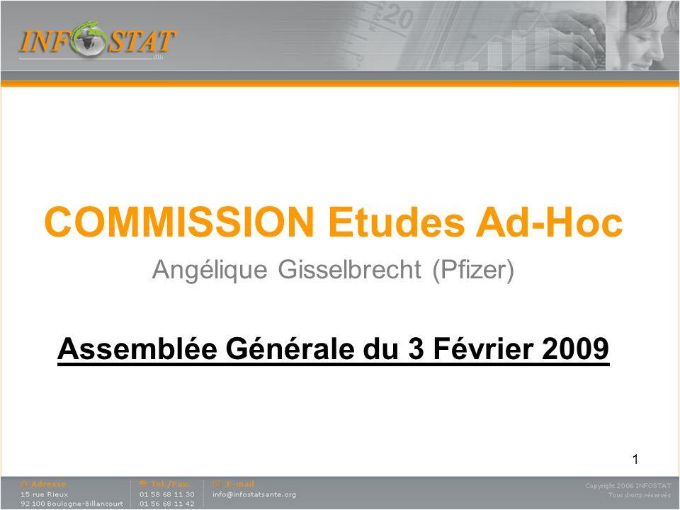 COMMISSION Etudes Ad-Hoc Assemblée Générale du 3 Février 2009