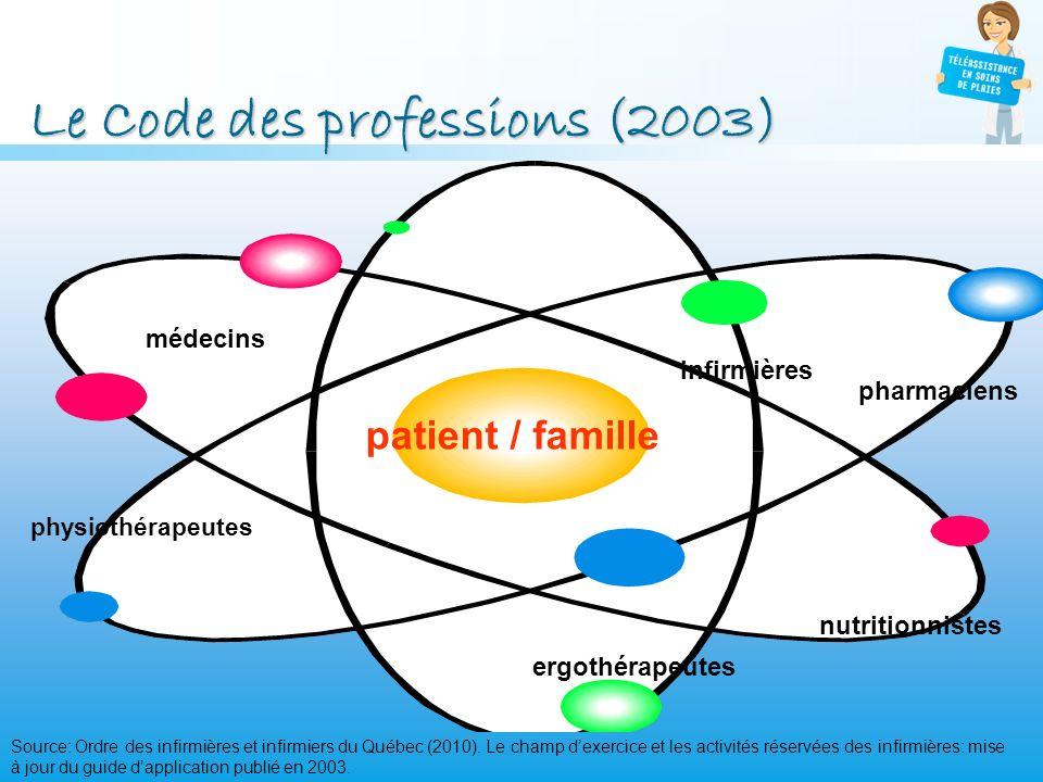 Le Code des professions (2003)