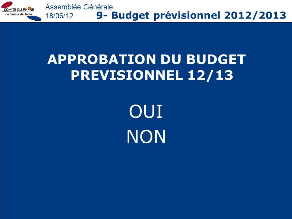 APPROBATION DU BUDGET PREVISIONNEL 12/13
