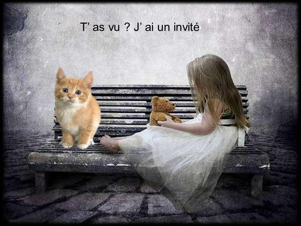 T' as vu J' ai un invité