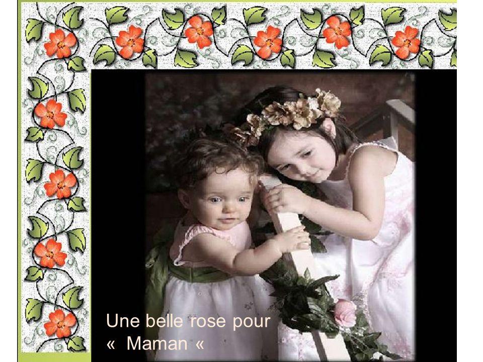 Une belle rose pour « Maman «