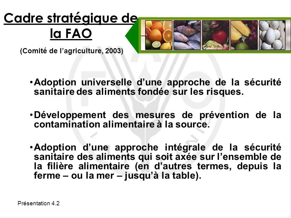 Cadre stratégique de la FAO