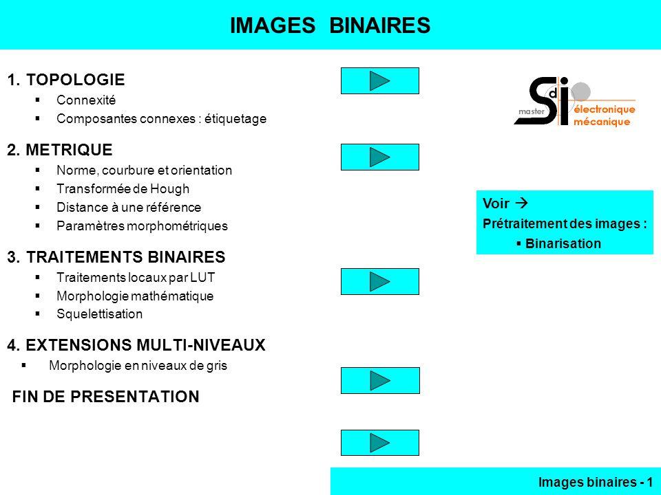 IMAGES BINAIRES 1. TOPOLOGIE 2. METRIQUE 3. TRAITEMENTS BINAIRES