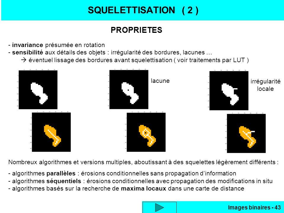 SQUELETTISATION ( 2 ) PROPRIETES - invariance présumée en rotation