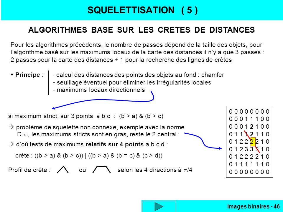 SQUELETTISATION ( 5 ) ALGORITHMES BASE SUR LES CRETES DE DISTANCES