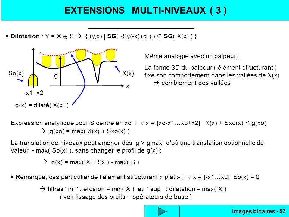 EXTENSIONS MULTI-NIVEAUX ( 3 )