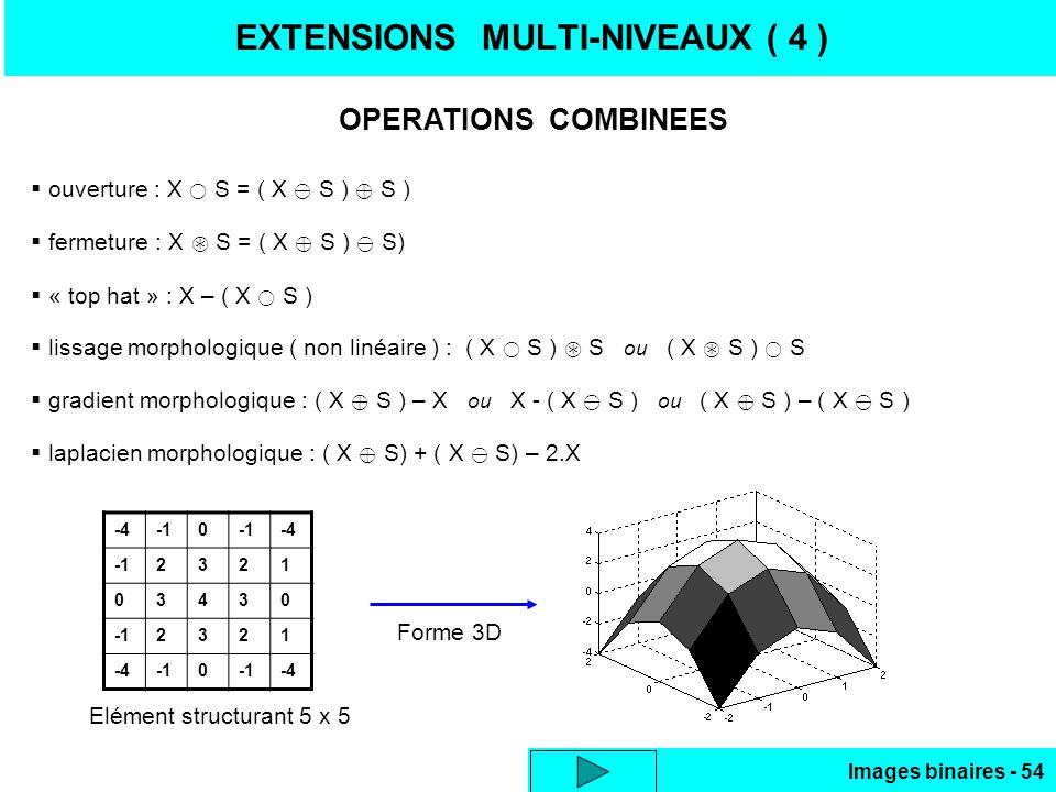 EXTENSIONS MULTI-NIVEAUX ( 4 )