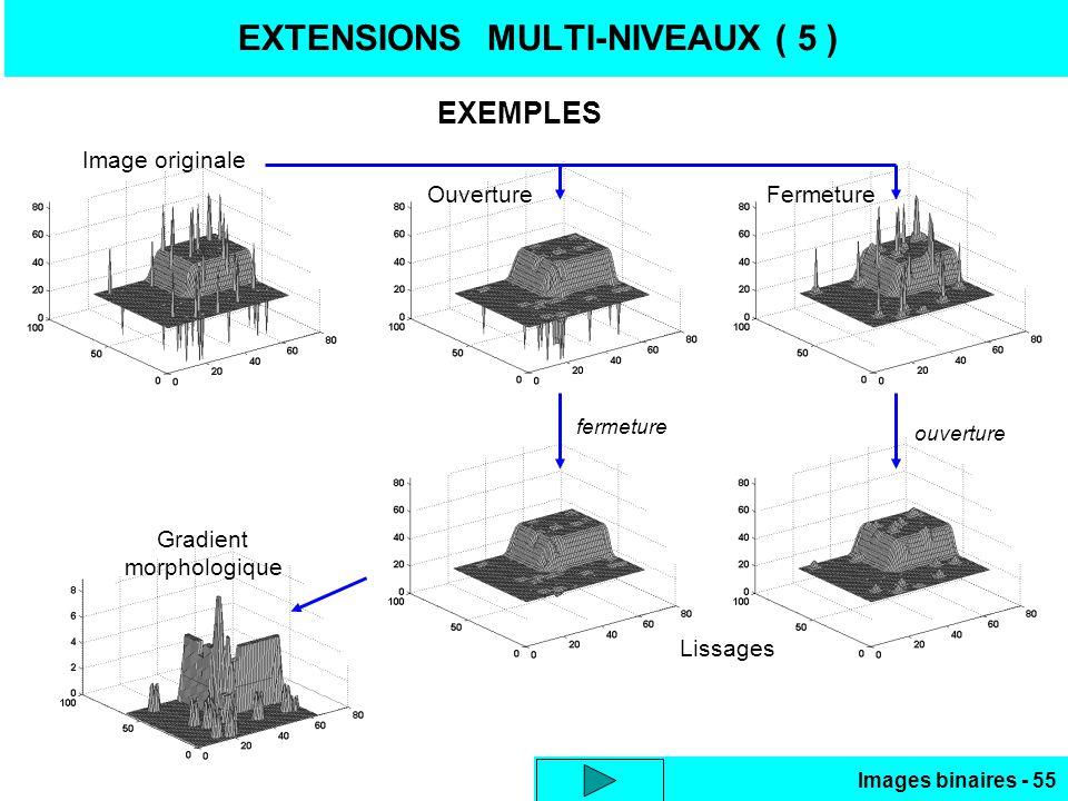 EXTENSIONS MULTI-NIVEAUX ( 5 )