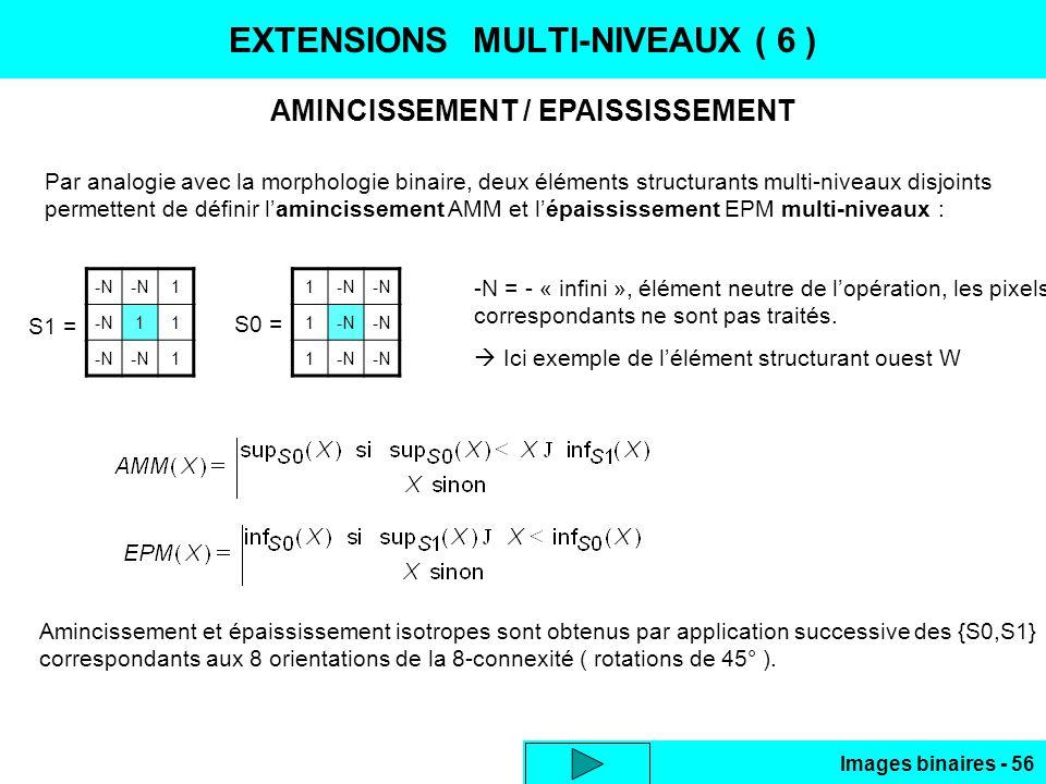 EXTENSIONS MULTI-NIVEAUX ( 6 )