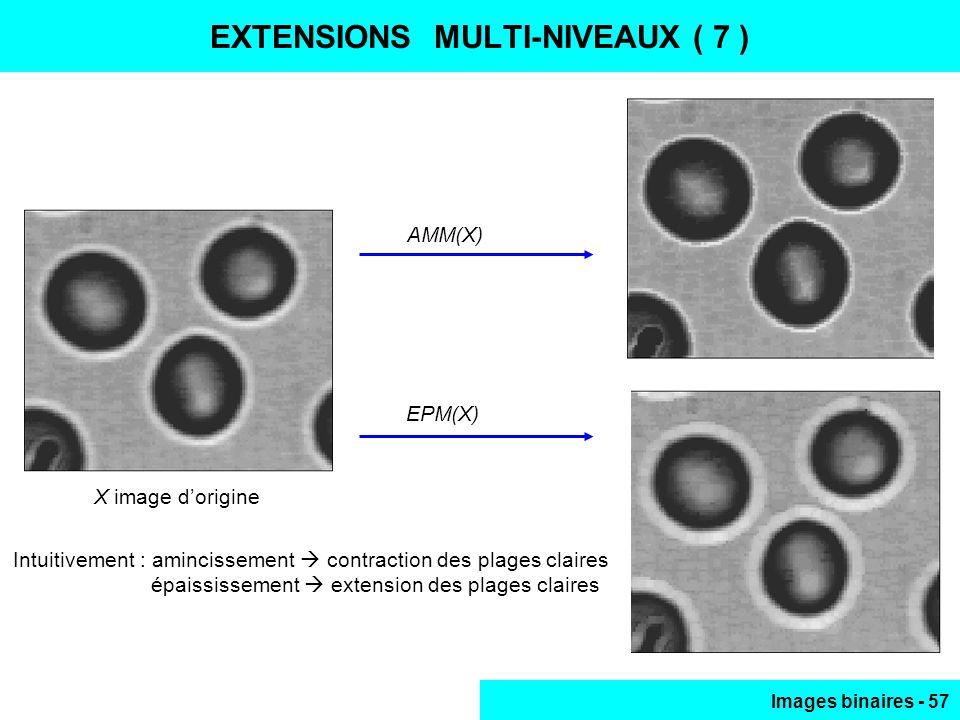 EXTENSIONS MULTI-NIVEAUX ( 7 )
