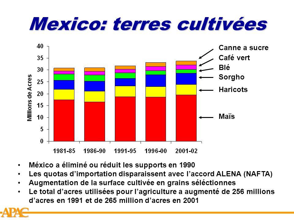 Mexico: terres cultivées
