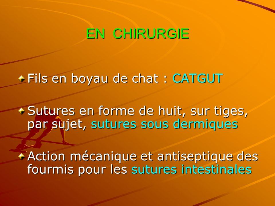 EN CHIRURGIE Fils en boyau de chat : CATGUT
