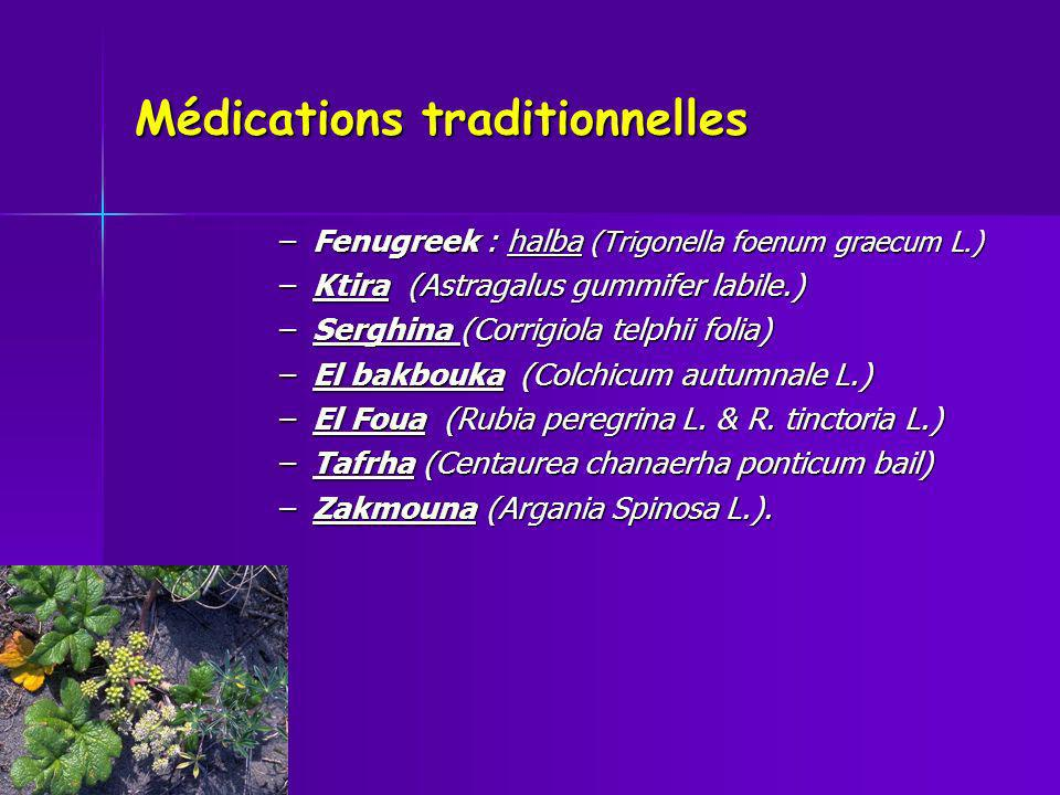 Médications traditionnelles