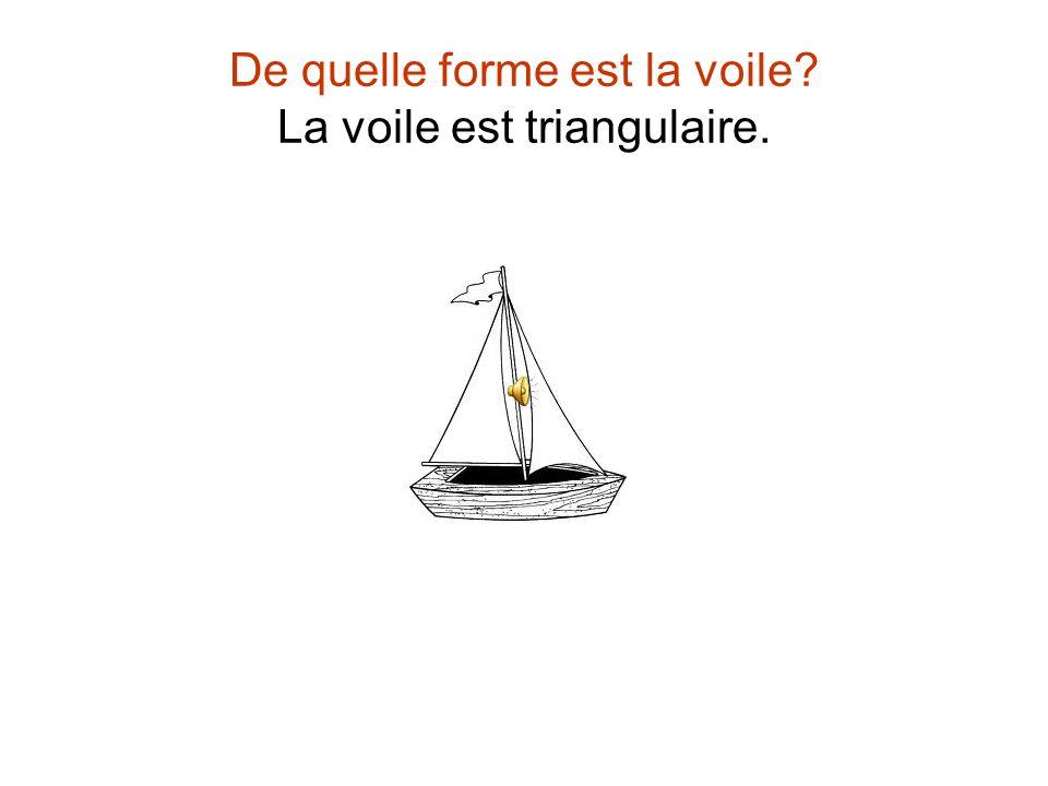 De quelle forme est la voile La voile est triangulaire.