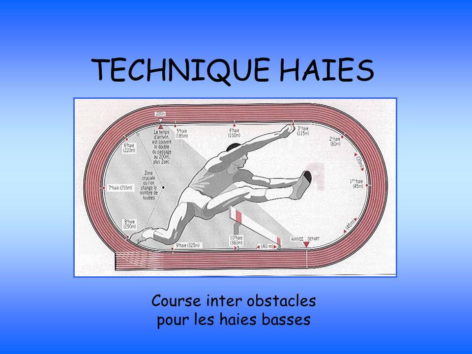 Course inter obstacles pour les haies basses