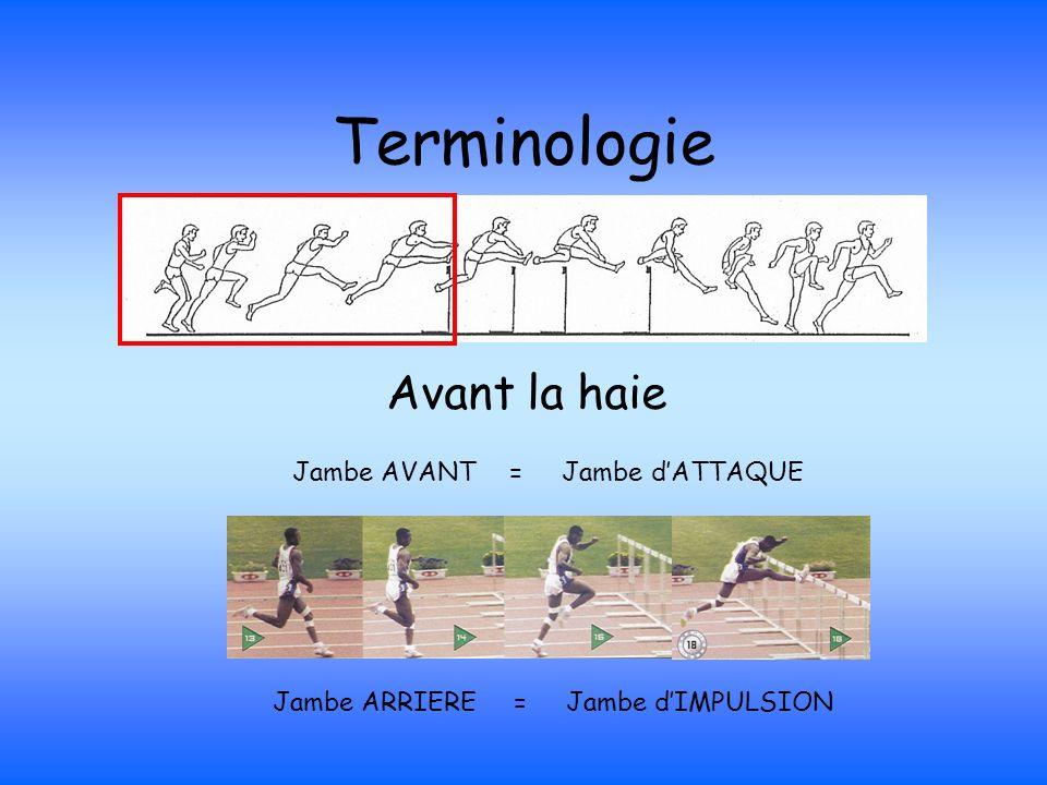 Terminologie Avant la haie Jambe AVANT = Jambe d'ATTAQUE