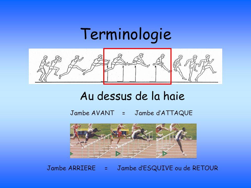 Terminologie Au dessus de la haie Jambe AVANT = Jambe d'ATTAQUE