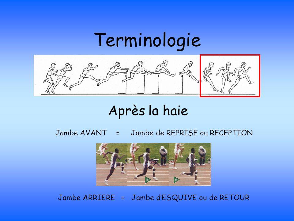 Terminologie Après la haie Jambe AVANT = Jambe de REPRISE ou RECEPTION