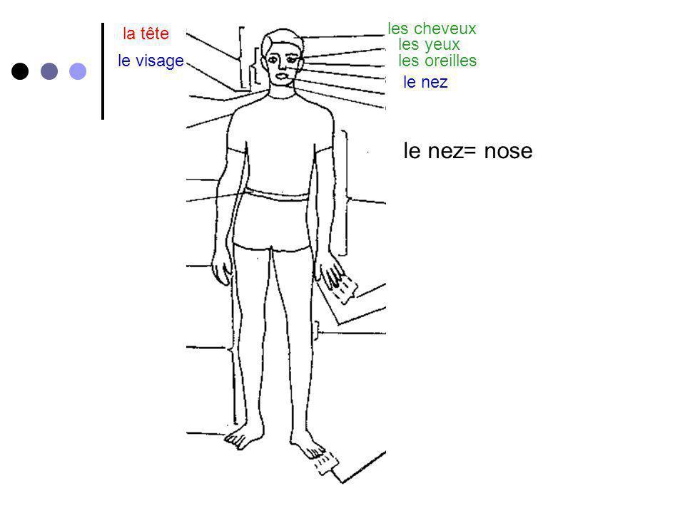 le nez= nose les cheveux la tête les yeux le visage les oreilles
