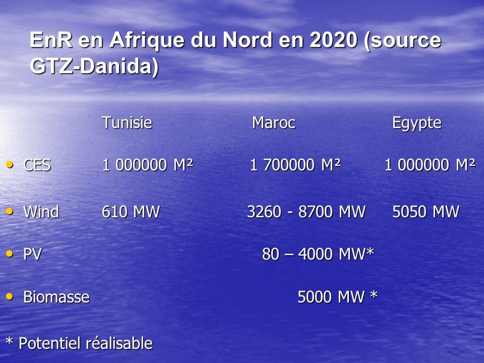 EnR en Afrique du Nord en 2020 (source GTZ-Danida)