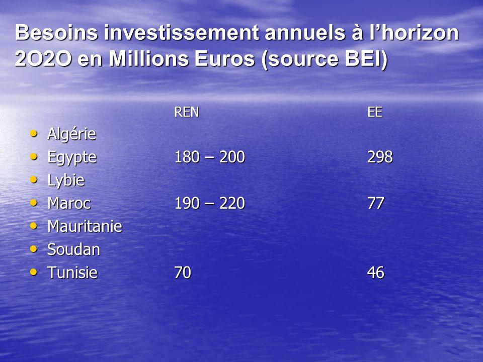 Besoins investissement annuels à l'horizon 2O2O en Millions Euros (source BEI)