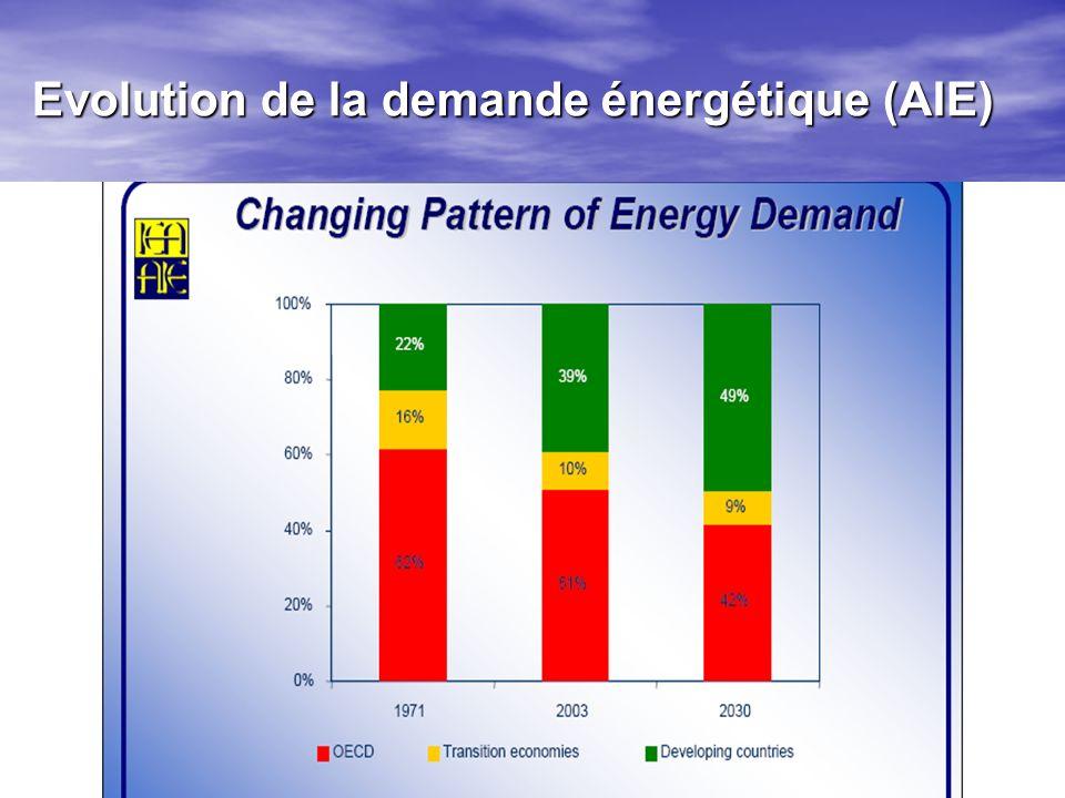 Evolution de la demande énergétique (AIE)