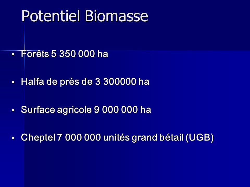Potentiel Biomasse Forêts 5 350 000 ha Halfa de près de 3 300000 ha