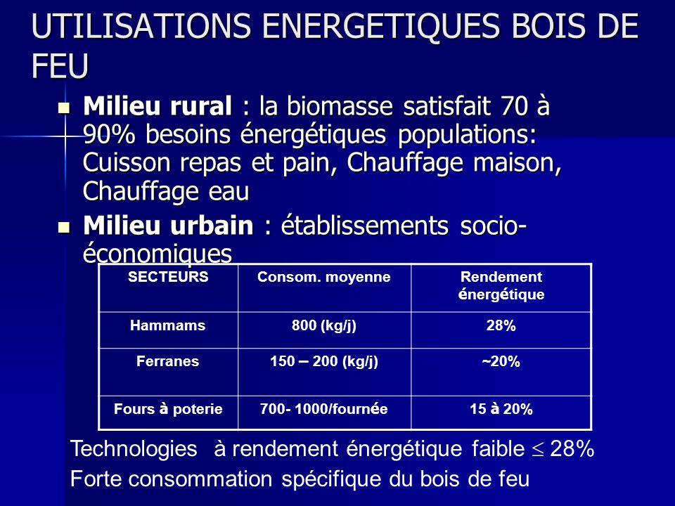 UTILISATIONS ENERGETIQUES BOIS DE FEU