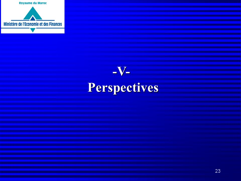 -V- Perspectives