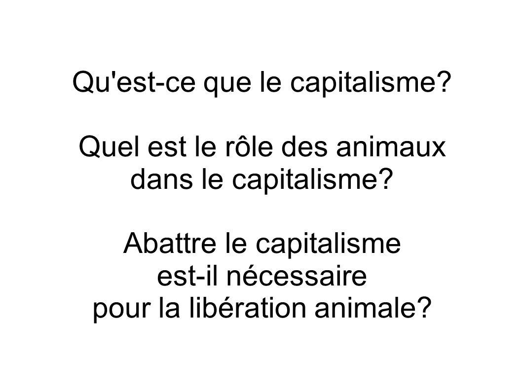 Qu est-ce que le capitalisme