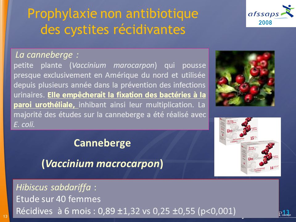 (Vaccinium macrocarpon)