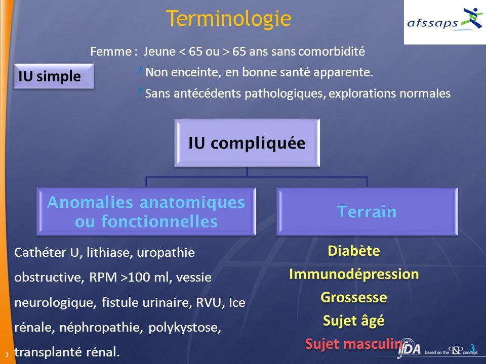 Anomalies anatomiques ou fonctionnelles