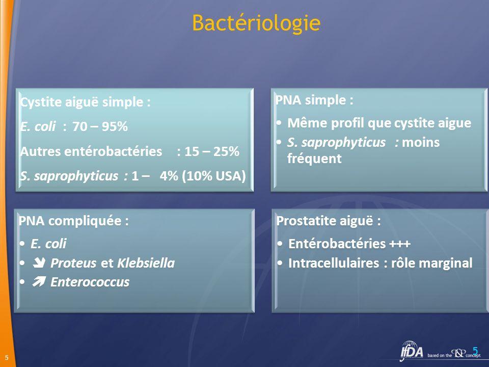 Bactériologie Cystite aiguë simple : E. coli : 70 – 95% Autres entérobactéries : 15 – 25% S. saprophyticus : 1 – 4% (10% USA)