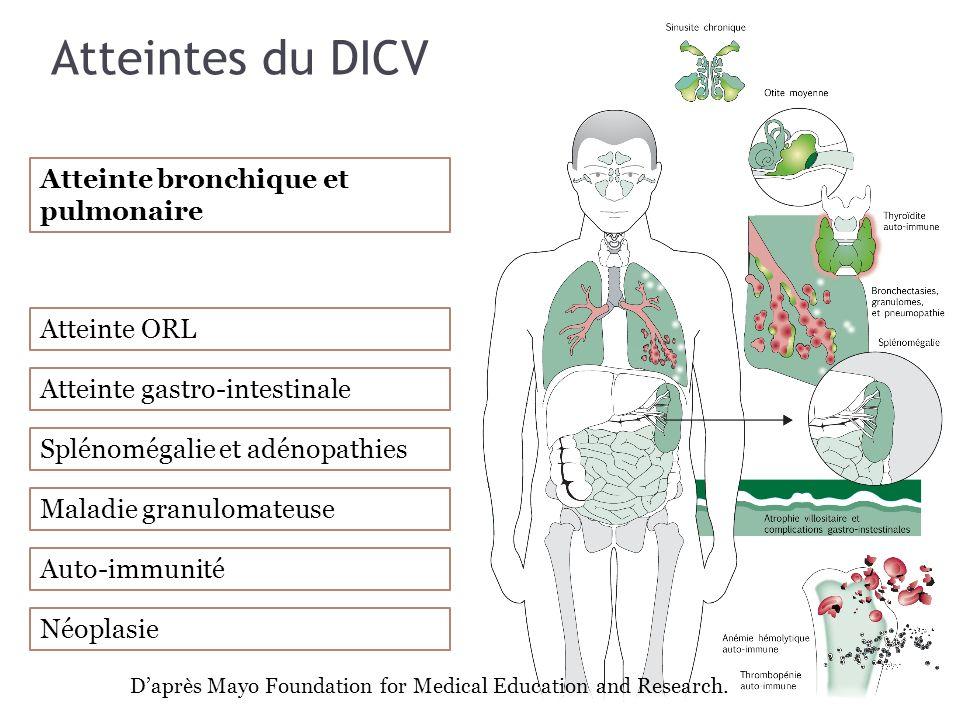Atteintes du DICV Atteinte bronchique et pulmonaire Atteinte ORL