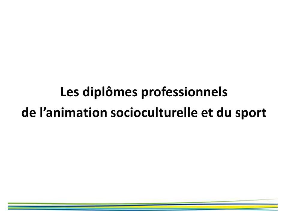 Les diplômes professionnels de l'animation socioculturelle et du sport