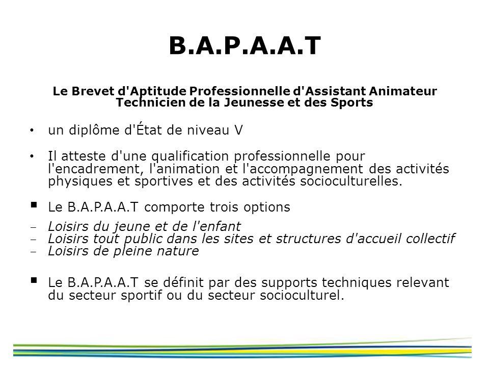 B.A.P.A.A.T un diplôme d État de niveau V