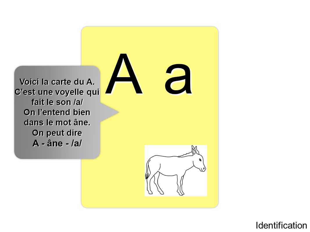 A a A - âne - /a/ Identification