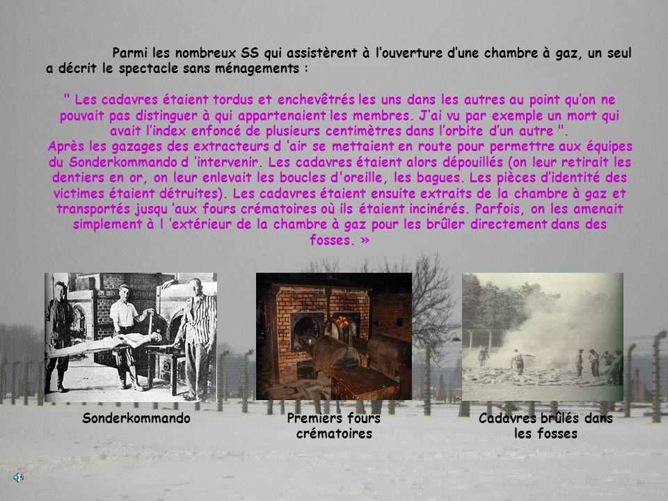 Premiers fours crématoires Cadavres brûlés dans les fosses