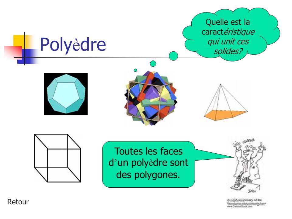 Polyèdre Toutes les faces d'un polyèdre sont des polygones.