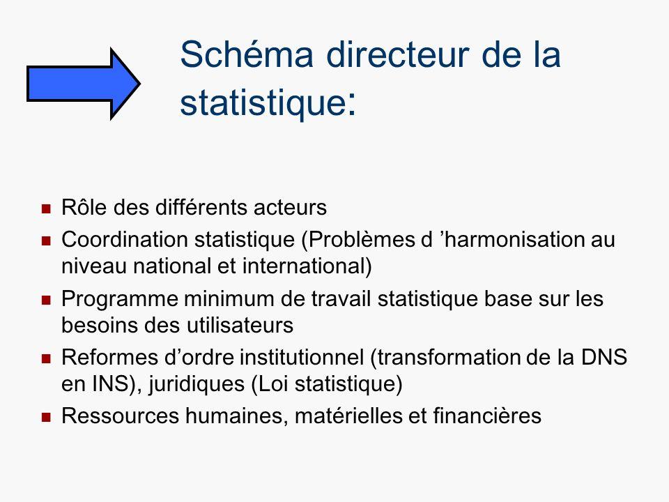 Schéma directeur de la statistique:
