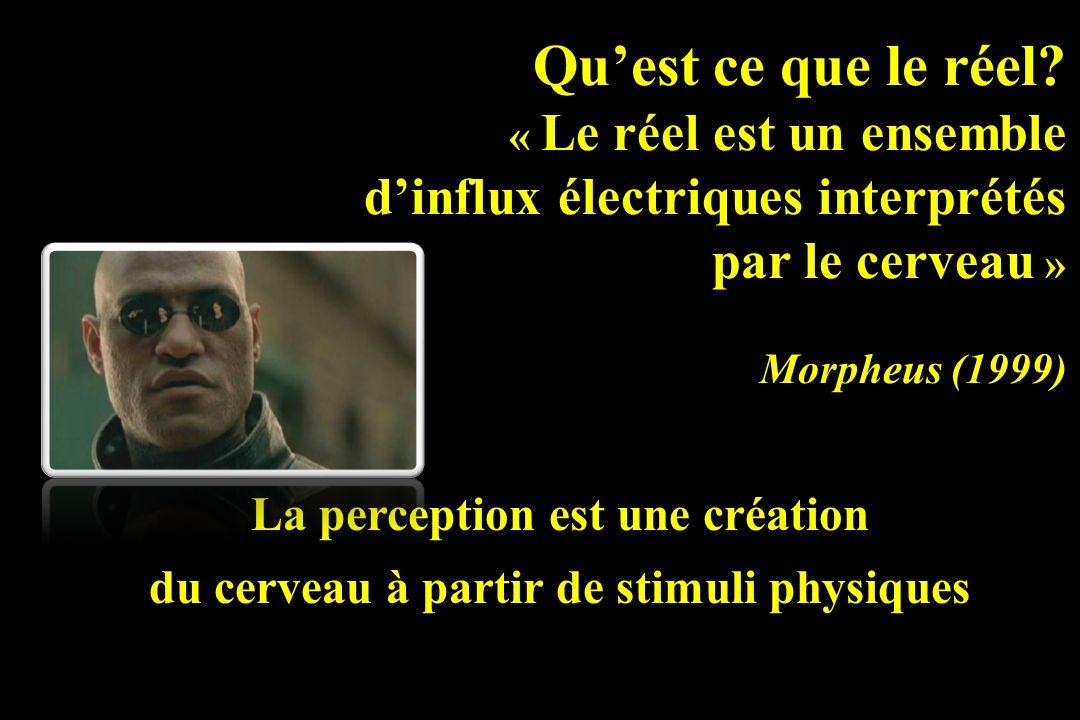 d'influx électriques interprétés par le cerveau »